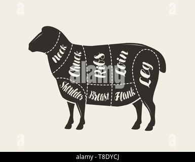 Cut of meat, lamb. Poster butcher diagram and scheme, vector - Stock Image