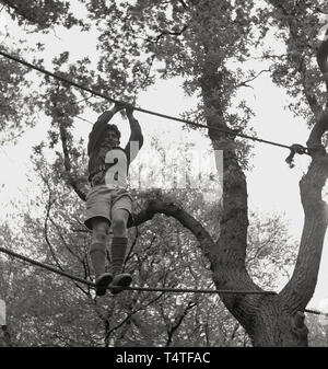 1960s, historical, an adventure scout standing high-up between two ropes attached to a tree in the forest, UK. - Stock Image