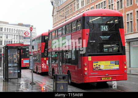 243 bus and queue of double decker red buses in Clerkenwell London England UK  KATHY DEWITT - Stock Image