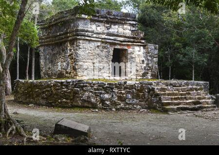 Ancient Mayan Civilization Ruins in San Gervasio Archeological Site, Cozumel Mexico - Stock Image