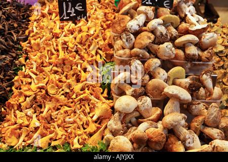 Barcelona Ramblas Mercat de Sant Josep La Boqueria market mushrooms - Stock Image