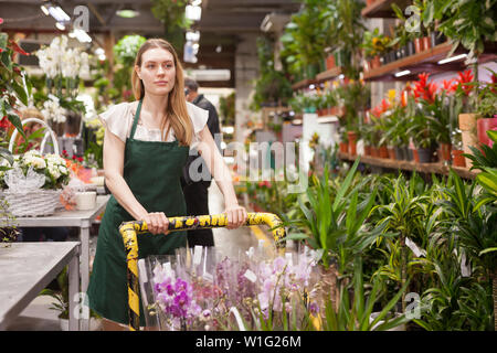 Female florist delivering pots of flowers on a pushcart - Stock Image