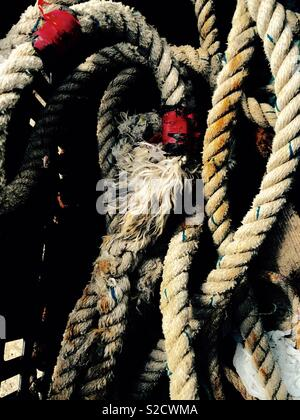 Tangled ropes - Stock Image