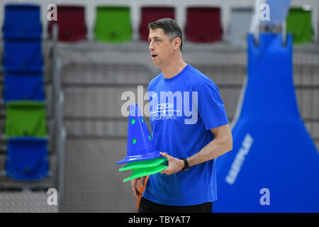 Stefan Svitek, Coach of the Czech Republic national basketball team, attends a training session prior to the European Championship (FIBA Women's EuroBasket 2019), on June 4, 2019, in Prague, Czech Republic. (CTK Photo/Ondrej Deml) - Stock Image