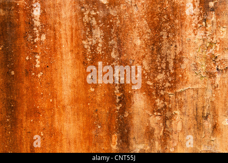 Weathered ochre wall, Hoi An, Viet Nam - Stock Image