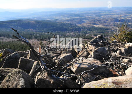 Rudawy Janowickie mountains, Landeshut Ridge. mountain range in Sudetes in Poland. Dry wood in front. - Stock Image