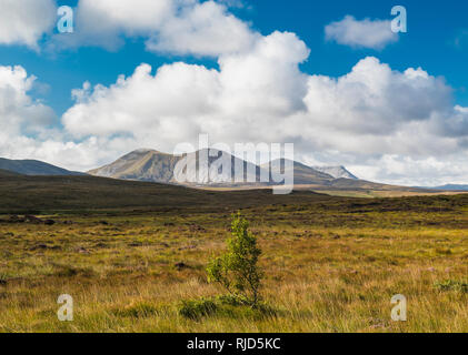 View across bogland towards the Derryveagh Mountains, including the iconic Mount Errigal, from bogland near Falcarragh, County Donegal, Ireland - Stock Image