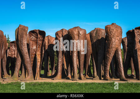 View of a bronze sculpture by Magdalena Abakanowicz titled The Unrecognised Ones (2002) sited in Citadel Park (Cytadela), Poznan, Poland. - Stock Image