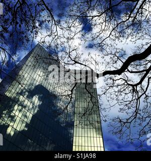Modern office building with trees in Mexico City - Stock Image
