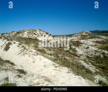 Spain. Galicia. Finisterre. Beach of O Rostro. Landscape of dunes with vegetation. La Coruña province. 'Costa da Morte' (Death Coast). - Stock Image