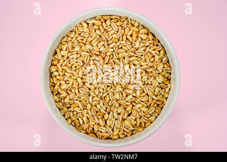 Bowl of Healthy Raw Farro Dicocco Seeds or Grain - Stock Image