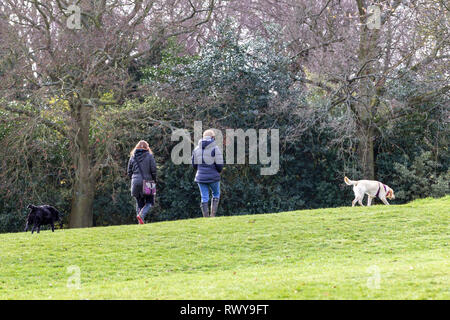 Northampton. U.K. 5th March 2019. Abington Park. A birght sunny morning  for people exercising their pets in the park., the forecast for this afternoon is light rain showers. Credit: Keith J Smith./Alamy Live News - Stock Image