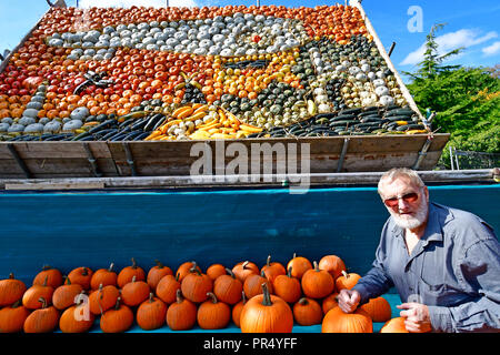 Slindon Village, West Sussex, UK. 29th September 2018. Annual Pumpkin Display Robin Upton stands in front of his pumpkin display, opening next week, which this year commemorates the hundredth anniversary of the RAF, the centenary of the Armistice and his family's 50 years of growing pumpkins. It runs from October to November (peaking around Halloweoen) and comprises of around 100 different varieties of pumpkin and squash.Credit Gary Blake/Alamy Live News - Stock Image