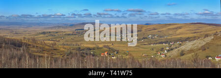 Panoramic view of Pester plateau landscape in southwest Serbia. Cows on a pasture, - Stock Image
