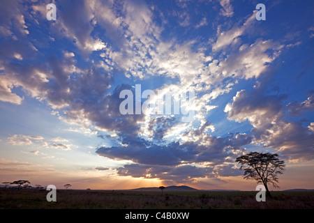 Tanzania, Serengeti. A stunning sunset over the Serengeti plains, near Seronera. - Stock Image