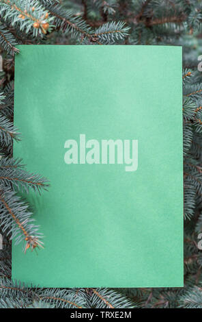 Green paper blank between fir branches arranged as a frame. - Stock Image