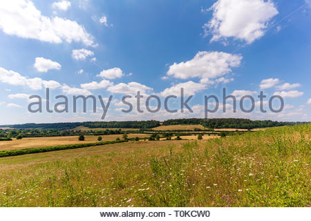 The Chiltern Hilsl between West Wycombe and Saunderton - Stock Image