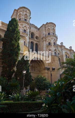 Cathedral of Málaga. (Catedral de la Encarnación). Andalusia, Spain. - Stock Image