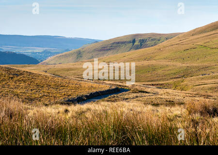 Countryside near River Tawe nr Glyntawe Pen-y-cae Brecon Beacons National Park Powys Wales - Stock Image