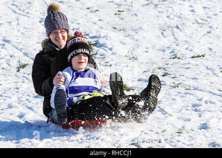 Chippenham, Wiltshire, UK. 2nd February, 2019. A woman and a child enjoying the snow before it thaws are pictured in a local park in Chippenham as they slide down a hill on a sledge. Credit: Lynchpics/Alamy Live News - Stock Image
