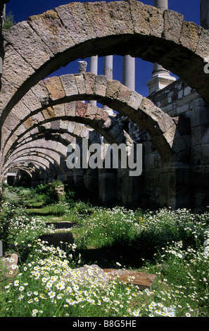 Agora Roman marketplace, Izmir Turkey - Stock Image