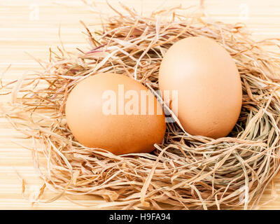 Fresh of brown eggs at hay nest . - Stock Image