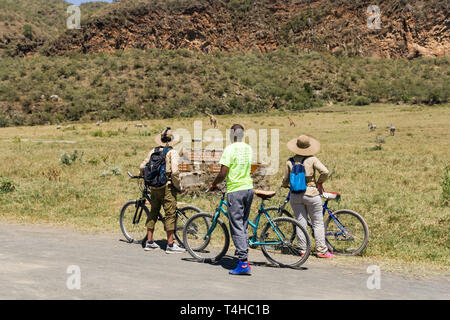 Tourists and guide with bikes stopped looking at wildlife, Hells Gate National Park, Kenya - Stock Image