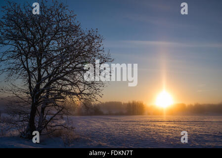 Sunrise in Finnish countryside landscape in - 31 degrees - Stock Image