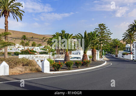View of the main road running through Haria Lanzarote with canary date palm trees ( Phoenix canariensis )in the centre - Stock Image