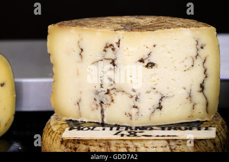 Locally produced Fresh Black Truffle Moliterno Cheese for sale on a market satll in Antibes in the south of France. - Stock Image