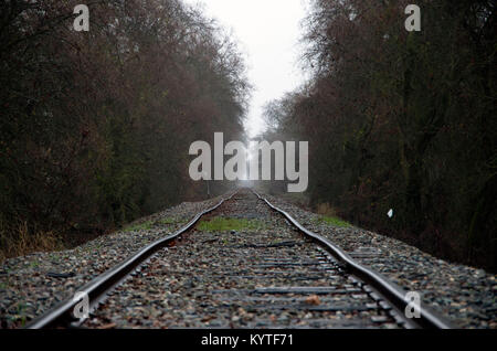 The early morning fog shrouds the distant train tracks. - Stock Image