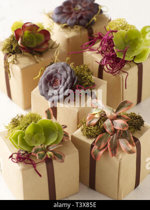 Rustic party favor gift boxes - Stock Image