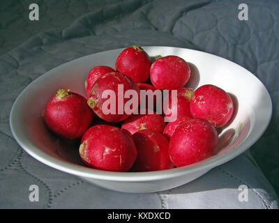 Big red radishes in dish close up - Stock Image