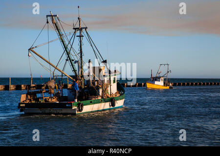 Fulton Harbor and oyster boats coming in to unload - Stock Image