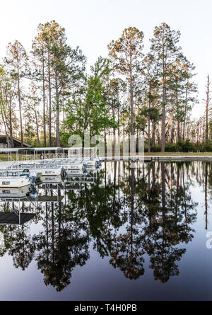 Okefenokee Swamp, Folkston, GA, USA-3/29/19: The canal at eastern entrance to the swamp, with skiffs at dock. - Stock Image