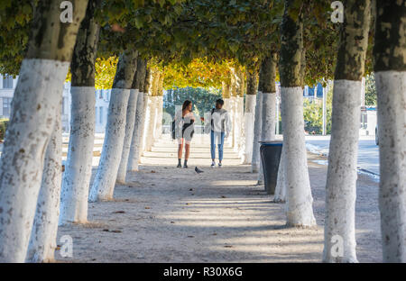 Two young women walking in alley tree, Mont des Arts in Brussels - Stock Image