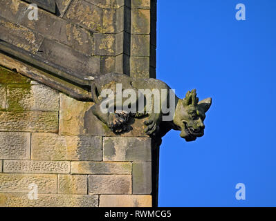 False Gargoyle or Grotesque. Holy Trinity, Kendal Parish Church. Kirkland, Kendal, Cumbria, England, United Kingdom, Europe. - Stock Image