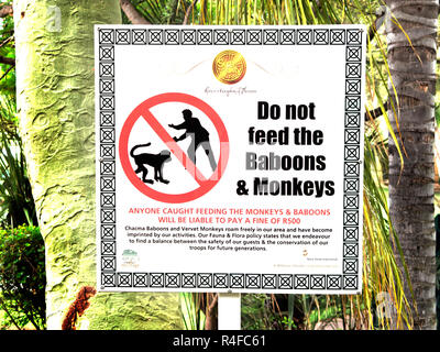 Do not feed the Baboons and Monkeys sign, South Africa - Stock Image