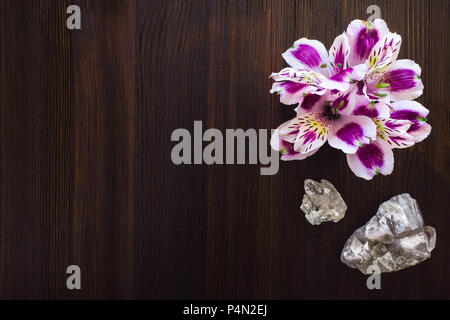 Peruvian Lillies with Quartz Crystals on Dark Wood Table with Space for Copy - Stock Image