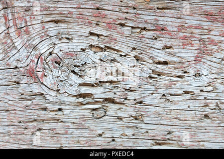 Old wood texture with some red paint stains and rusty nails - Stock Image