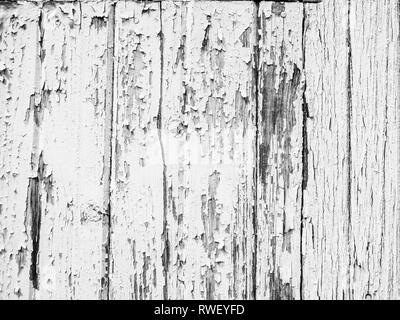 Peeling paint flakes on a white wooden wall high resolution background digital wallpaper abstract weathered texture - Stock Image