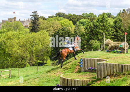 Rockingham Castle, Corby, UK. 21st May, 2017. Sarah Hedges and her horse Animagus run uphill towards a log obstacle - Stock Image