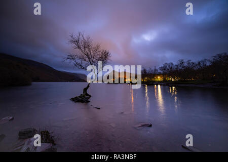 Lone tree at night at Llyn Padarn, Snowdonia, North Wales - Stock Image