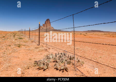Agathla Peak seen from behind a barbed wire fence, Monument Valley, Kayenta County, Arizona, USA. - Stock Image