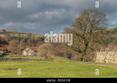 North Pennines AONB landscape, Holwick Head farm, Upper Teesdale in strong late autumn sunshine and a dramatic sky - Stock Image