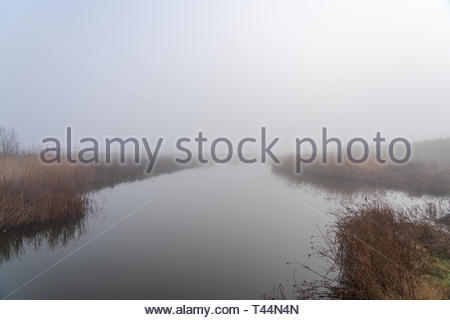 Still waters of a pond on a cool foggy morning in England - Stock Image