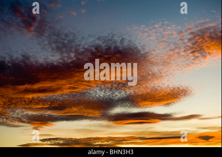 image of altocumulus clouds at sunset - Stock Image