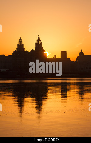 Liver building Liverpool sunrise - Stock Image