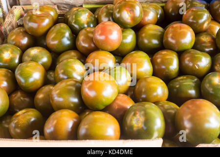 Designer fruit Kumato tomato ,Solanum lycopersicum, on display in Kensington Market in downtown Toronto Ontario - Stock Image