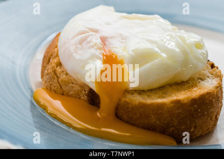 Poached Egg on Toast Bread for Breakfast. Organic Food. - Stock Image